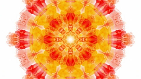 orange rotation flower lotus pattern,kaleidoscope,oriental watercolor flower texture.Buddhism Mandal Animation