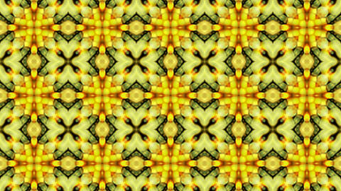 Gorgeous oriental flower lotus fancy background.Buddhism... Stock Video Footage