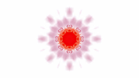 pink rotation flower pattern,oriental lotus totem,kaleidoscope.Buddhism Mandala flower,kaleidoscope Animation