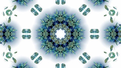 blue butterfly circle pattern and smoke.lotus,Buddhism... Stock Video Footage
