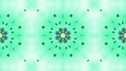 green butterfly circle pattern and smoke.lotus,Buddhism Mandala flower,kaleidoscope,oriental religio Animation