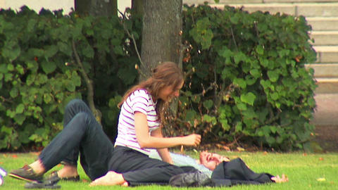Lovers on the grass 1 Stock Video Footage