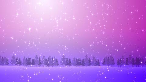Winter Snow Bl2 HD Stock Video Footage