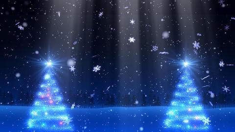 Winter Snow Bw1 HD Stock Video Footage