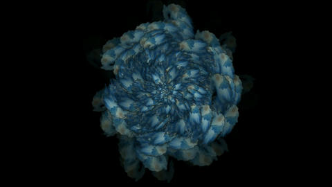 blue swirl fancy pattern,like as bloom flower,Vegetables,leave,plants,petal,cabbage,particle,Design Animation