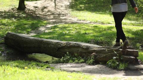 Girl Walks Over Log Footage
