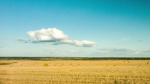The beauty of nature, a field of wheat, hay, cloud Footage