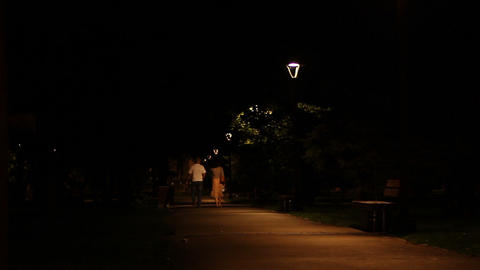 Nighttime Middle Age Park Promenade Footage