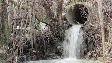 Sewage Polluting Pipe Footage
