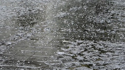 Shower of Hail on Paved Street Footage