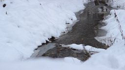 Snowy Cold Water Stream Footage