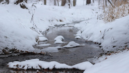 Winter Small River Flowing Footage