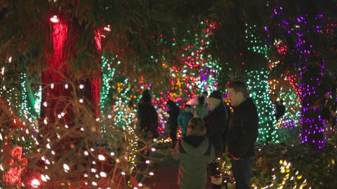 Father and son at Vancouver Vandusen Christmas lig Footage