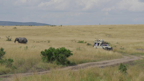 Tourists in jeep on a game ride through Maasai Mar Footage