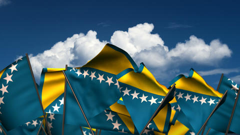 Waving Bosnia And Herzegovinan Flags stock footage