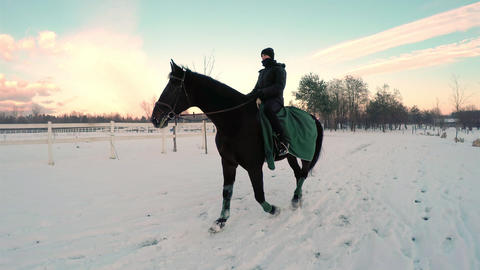 SLOW MOTION: Young woman riding big black horse in Footage
