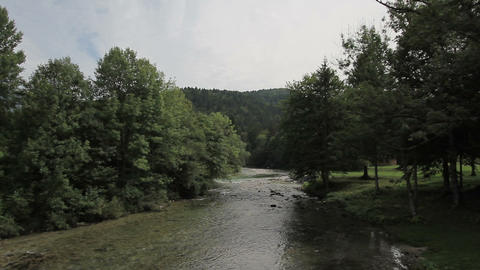 River And Forest In Slovenia stock footage