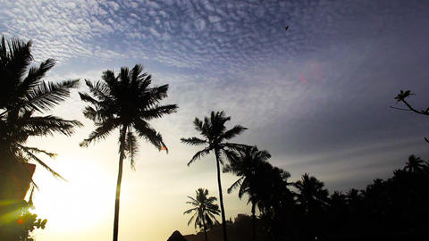 20120908 Dc Kovalam 004 stock footage