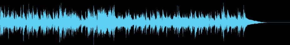 Whistling Uke (Stinger) stock footage