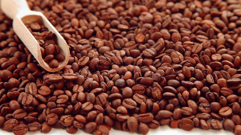 Coffee bean seeds background Footage