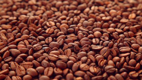 Coffee beans background Footage