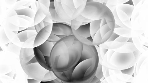 3d white and black glass balls... Stock Video Footage