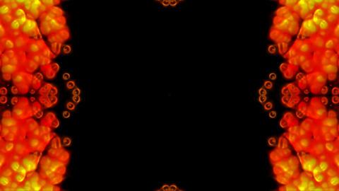 Gorgeous flower fancy pattern like as... Stock Video Footage