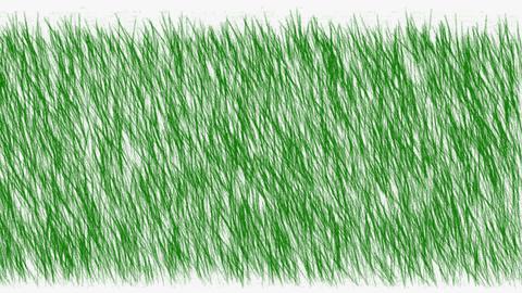 green grass... Stock Video Footage