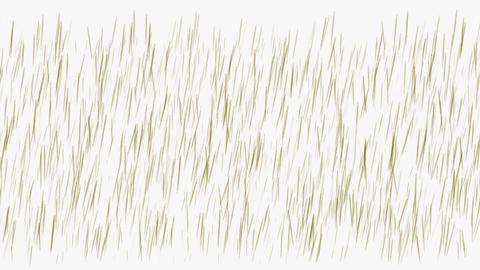 brown grass... Stock Video Footage