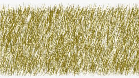 brown grass swing.botany,environment,farm,field,flight,footage,fresh,freshness,garden Animation