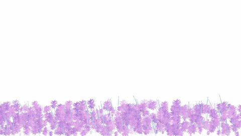 purple swing leaves,watercolor style,spring scenery.Grasslands,wetlands,wheat,barley,seedlings,lives Animation