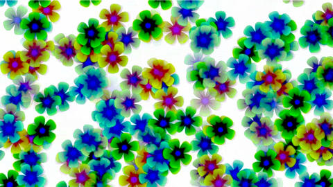 color wild flower flow background.Vegetables,bloom,floral,love,petals Animation