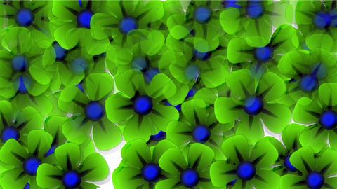 green wild flower flow... Stock Video Footage