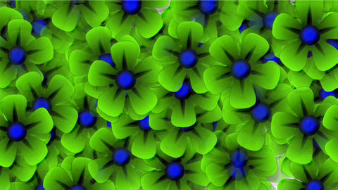 green wild flower flow background.bouquet,floral,flower,love,petals,romance Animation