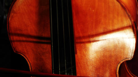 Musician and Double Bass 03 Stock Video Footage