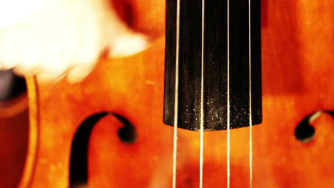 Musician and Double Bass 17 playing jazz focus change Stock Video Footage