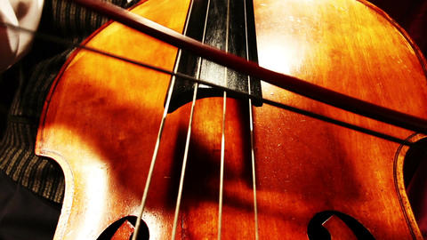 Musician and Double Bass 21 playing wide low angle Stock Video Footage
