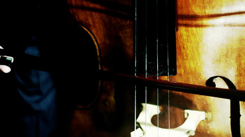 Musician and Double Bass 27 stylized artcolored Stock Video Footage