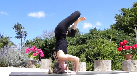 Fitness - Women exercise healthy peaceful Yoga lifestyle... Stock Video Footage