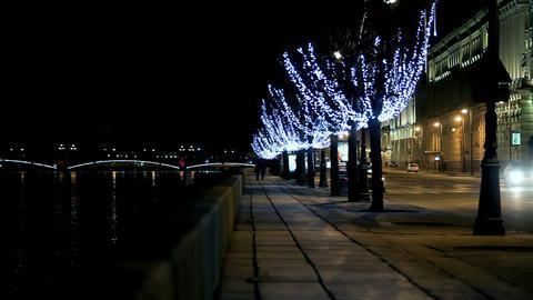 Palace Embankment Stock Video Footage