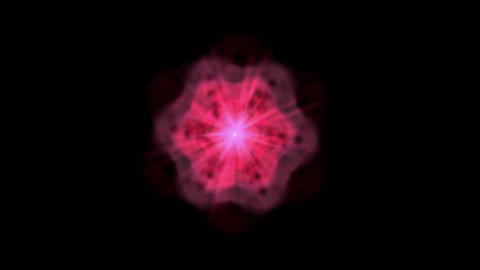 Dazzling purple flower pattern,seamless loop,Fireworks,Snow,petal,makeup,music,sound,blood,particle Animation