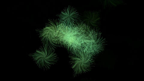wild flower in the wind,particle,Pine,pine-needles,wool,ball,material,texture,bubble,blister,oxygen Animation