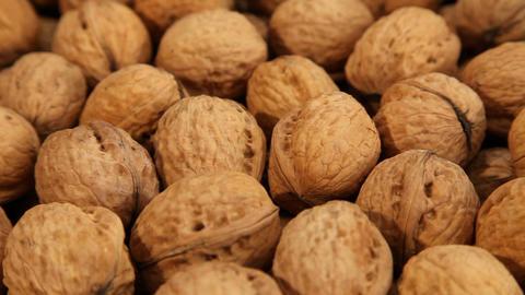 Walnuts pile ライブ動画