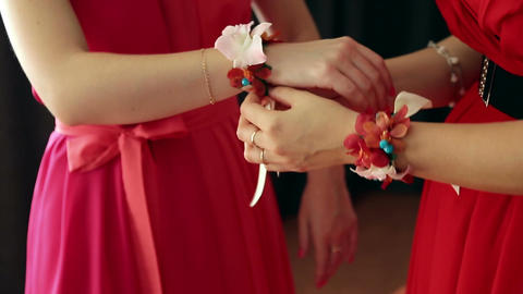 Bridesmaid Dress Up stock footage