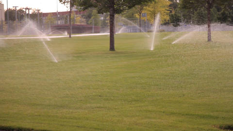 1756 watered lawns Footage