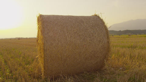 Bale of hay on a field at sunset Footage