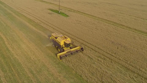 AERIAL: Combine harvesting wheat Footage