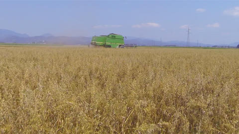AERIAL: Flying over combine harvester on wheat fie Footage