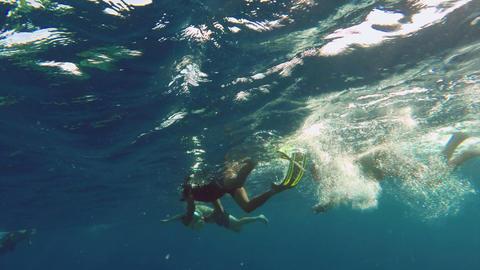 People snorkelling with cameras underwater Footage