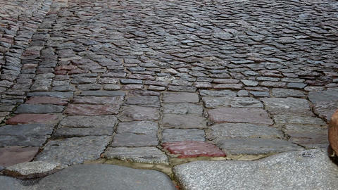 Vertical pan of cobblestone pavement Footage